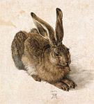 Young Hare (1502)